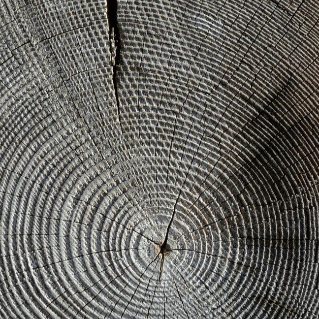 wood-618673_1920